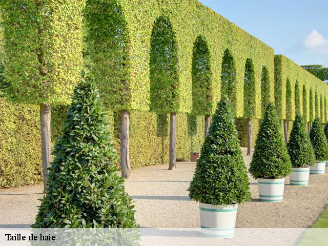 quand tailler arbre fruitier beautiful quand tailler les arbres with quand tailler les arbres. Black Bedroom Furniture Sets. Home Design Ideas