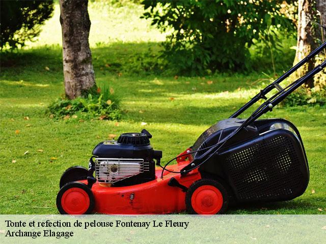 Tonte et refection de pelouse  fontenay-le-fleury-78330 Archange Elagage